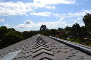 Comp and DuroLast Roof With SolarWorld System Salinas 03